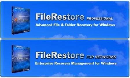 PCRecovery FileRestore for Networks/Professional 4.1.2