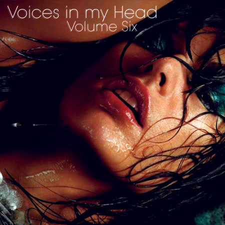 VA-Voices in my Head Volume 6 (April 2011)