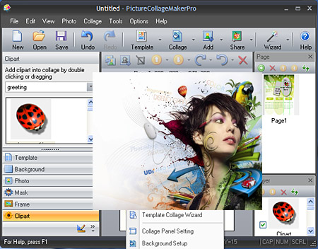 Picture Collage Maker Pro 3.2.0.3595 + Portable