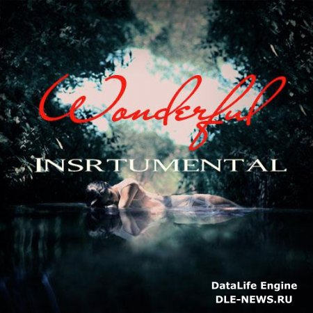 Wonderful Insrtumental (2012)