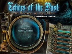 Echoes of the Past 4: The Revenge of the Witch Collectors Edition (2012/Eng)